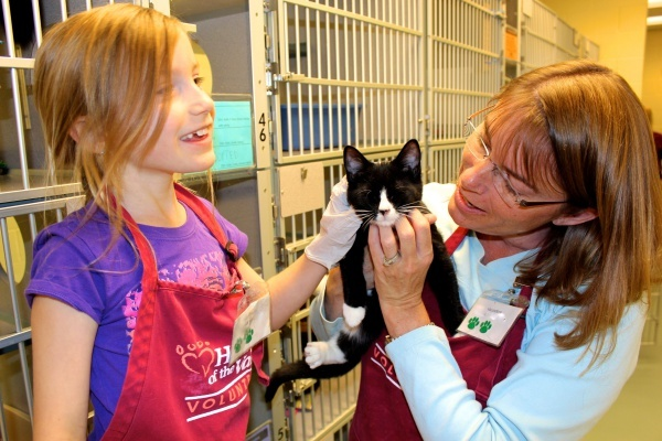 Love animals? Volunteer at an animal shelter to reduce your stress and help out at the same time!