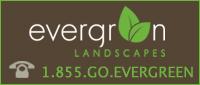 Evergreen Landscapes