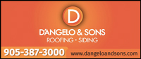 D'Angelo & Sons Construction Ltd