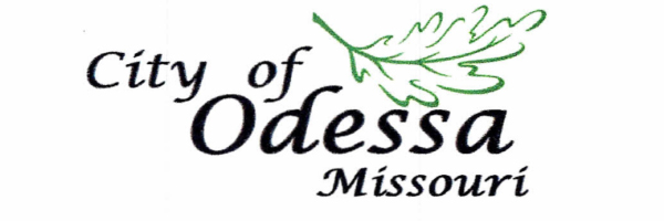 Odessa B.O.A. to Appoint Replacement Alderman