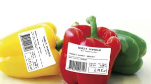Shelf-life issues for food in summer months