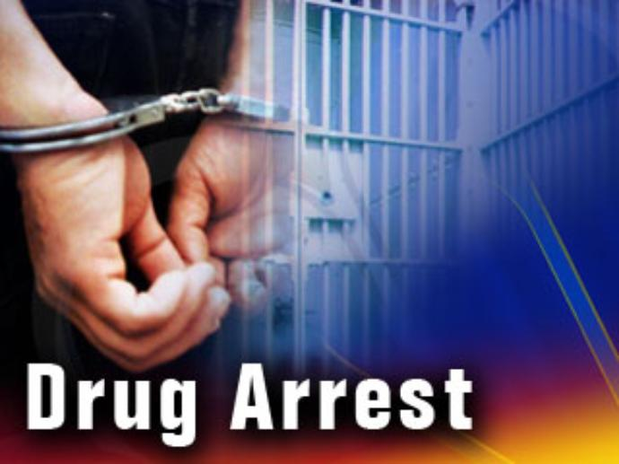 Traffic stop and K-9 search lead to drug and firearm charges