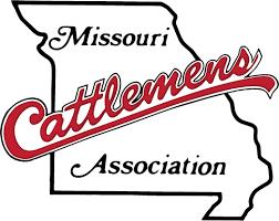 Cattlemen recognize students, raise money for scholarships