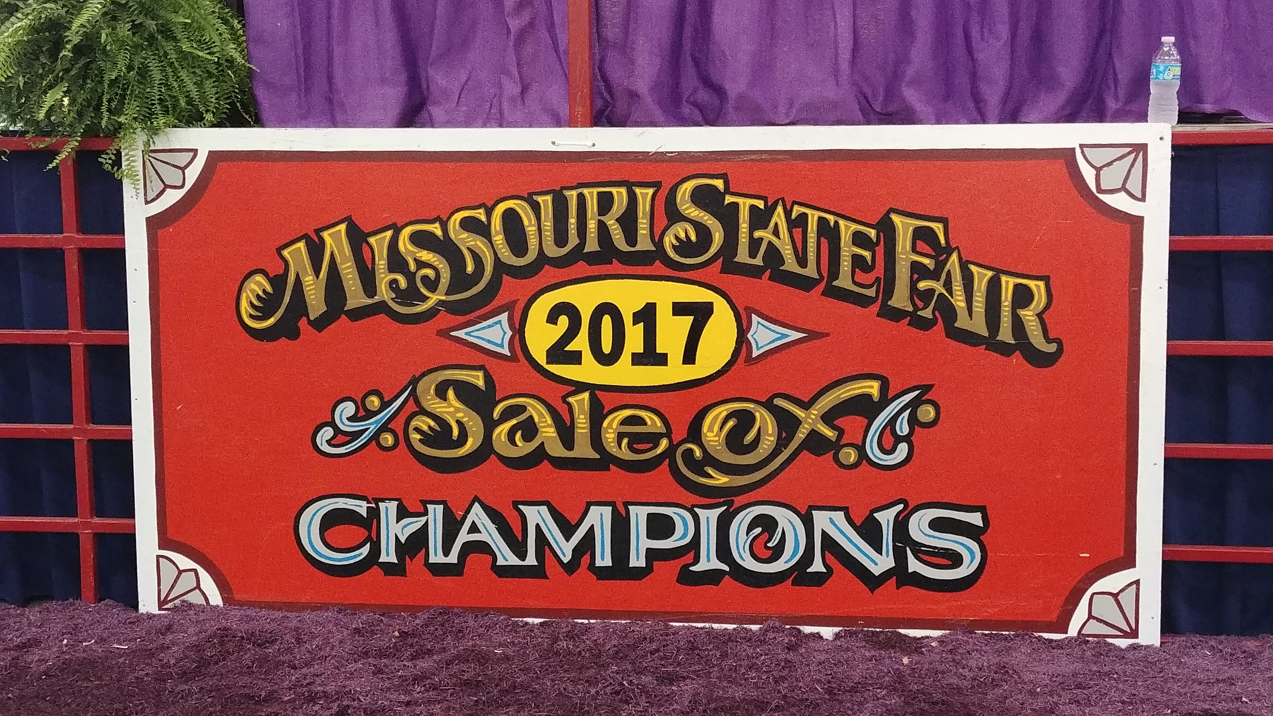 2017 Sale of Champions results
