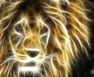 Lion light
