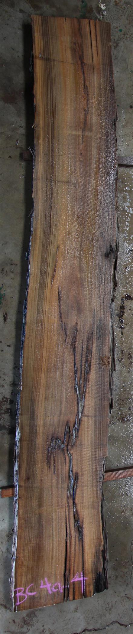 Buried Cypress Slab BC004a-04