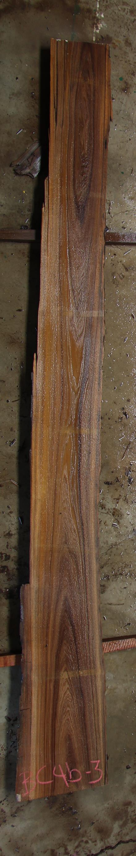 Buried Cypress Slab BC004b-03