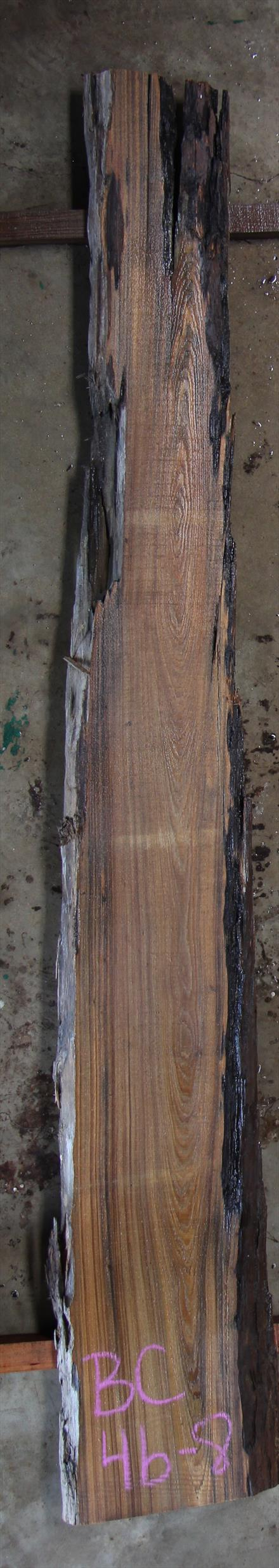 Buried Cypress Slab BC004b-08