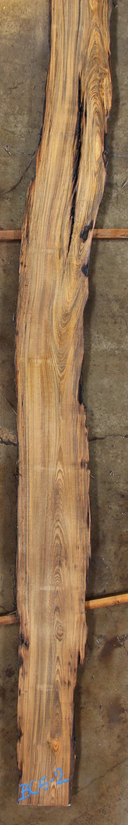 Buried Cypress Slab BC005-02