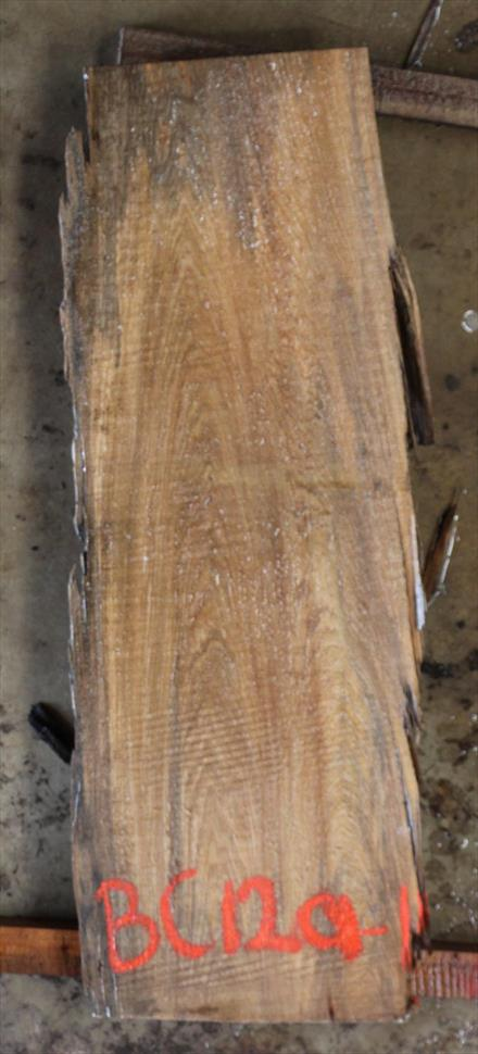 Buried Cypress Slab BC012a-11