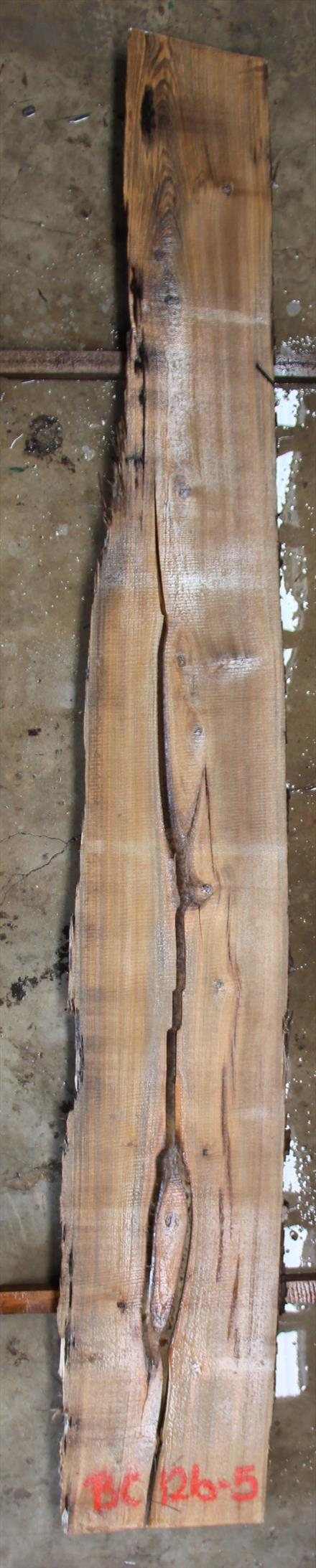 Buried Cypress Slab BC012b-05