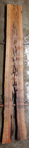 Buried Cypress Slab BC016a-06