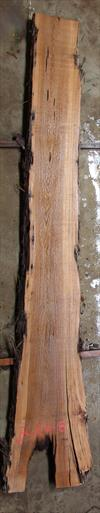 Buried Cypress Slab BC016a-08