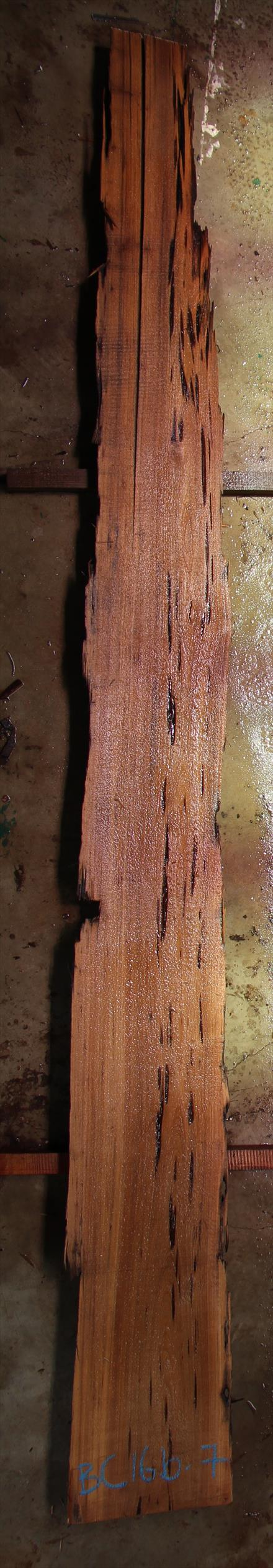 Buried Cypress Slab BC016b-07