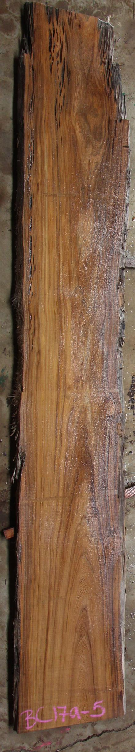 Buried Cypress Slab BC017a-05