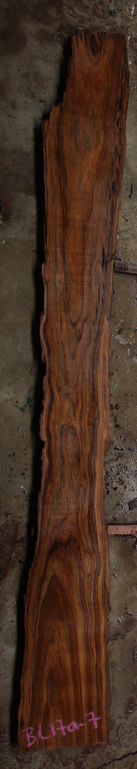 Buried Cypress Slab BC017a-07