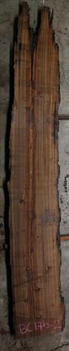 Buried Cypress Slab BC017b-02