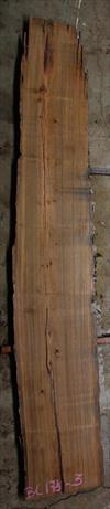 Buried Cypress Slab BC017b-03