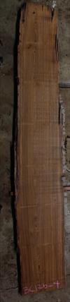 Buried Cypress Slab BC017b-04