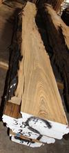 Slabs of Buried Cypress Log BC005