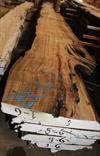 Slabs of Buried Cypress Log BC006