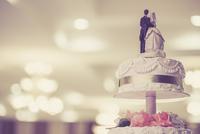 Shutterstock 140279116