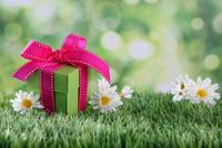 Shutterstock 179531639
