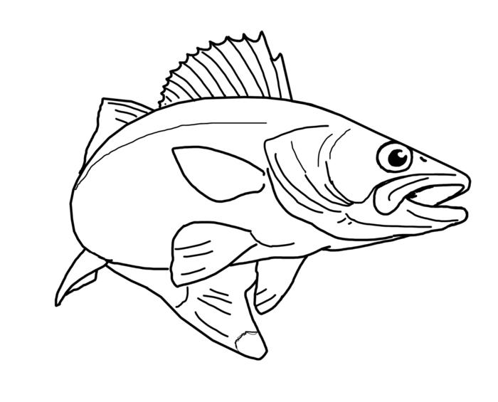 Ichthys  Wikipedia