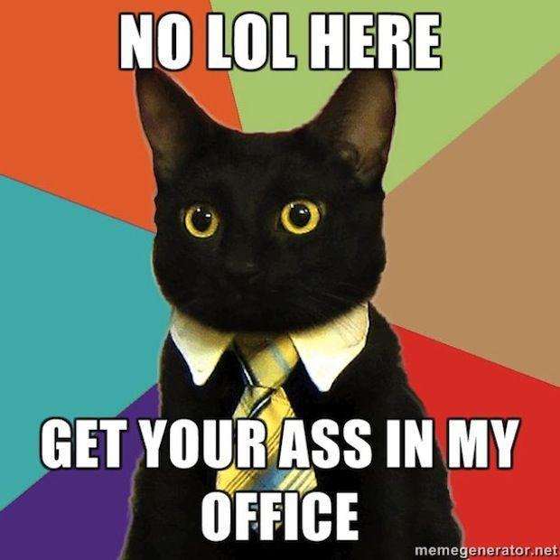 haha.. Yeah. Business-cat-07