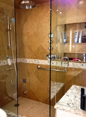 LaSalle Shower in Guest Bath