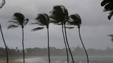 Florida marks record of 10 years without major hurricane