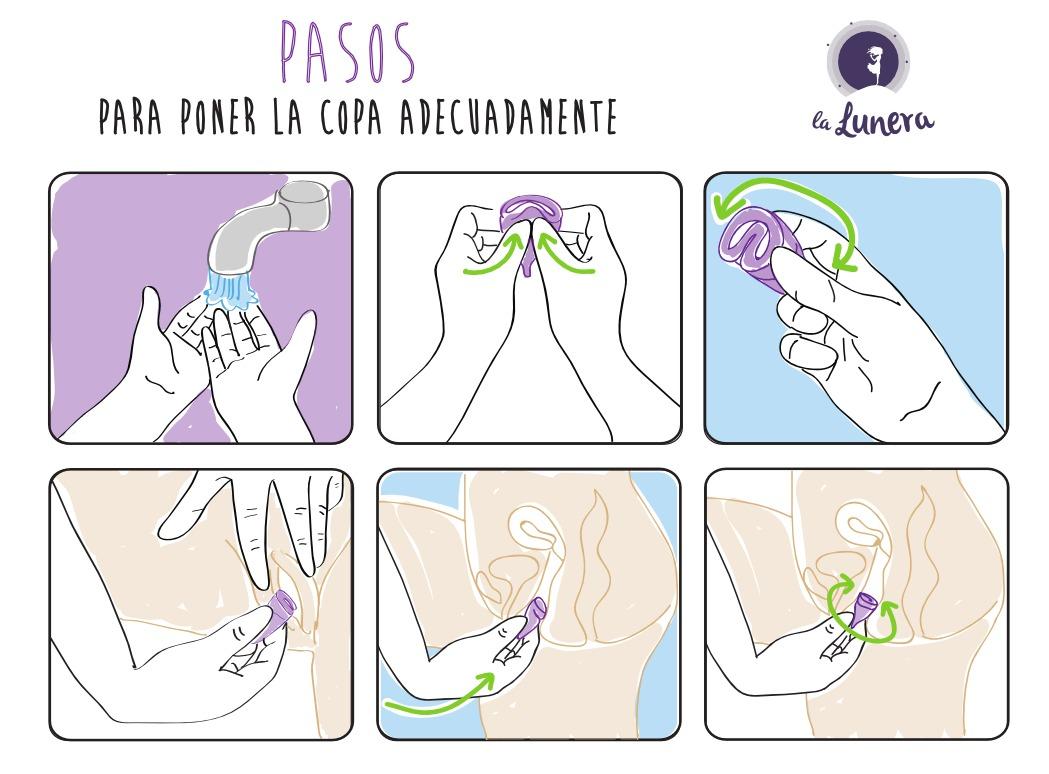 pasos-para-usar-la-copa-menstrual