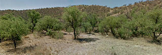 Come enjoy the SW lifestyle on this over half acre parcel in Rio Rico