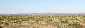 Large West Texas Acreage in Rural Area
