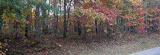 Beautiful Tennessee Wooded Property Near Saint George Lake