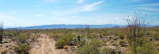 1.35 Acre Parcel an Hour from Kingman and Lake Havasu City