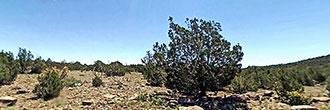 Off the Grid Land in Eastern Arizona