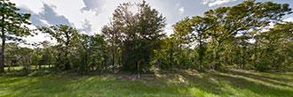 Large Lot in Undeveloped Subdivision