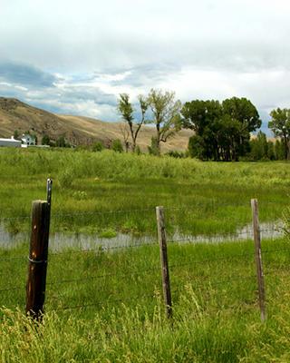 Cheap-Colorado-Land