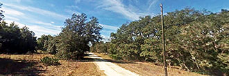 Desirable Homesite in Quiet Rural Setting