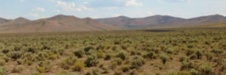 Large Nevada Acreage North of Reno