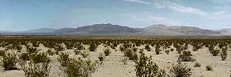 Five Acres of Beautiful California Land