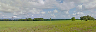 Emerald 1+ Acre Florida Wonderland west of Gainesville