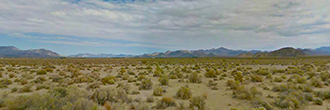 Ten Acre Property About 10 Miles NE of Lucerne Valley