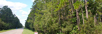 Ideal Homesite With Great Access