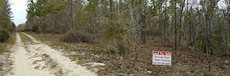 Large Private Lot in Rural Hawthorne Florida