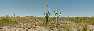 Four Plus Acres in Serene Desert Setting