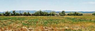Large Acreage Farmers Utopia