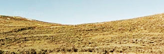Get Away to 40 Acres in Rural Wyoming