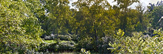 Property Near the Appalachian Trail